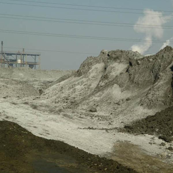 上海选煤铁精粉